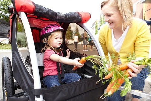Child In Bike Trailer Buckled And With Helmet With Mother