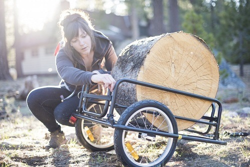 Woman With Big Log On Cargo Bike Trailer