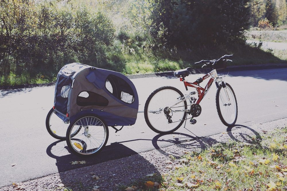 Finding The Best Dog Trailer For Your Bike