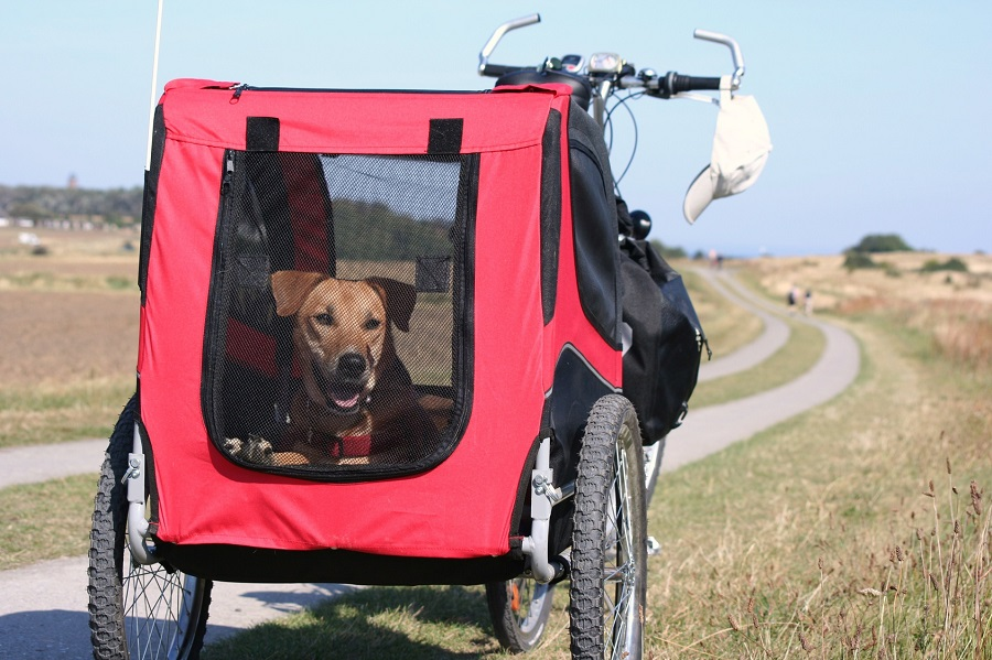Veelar Doggyhut Large Pet Bike Trailer Review